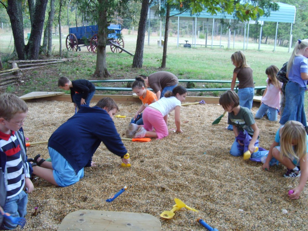 Children Playing At Dino Dig