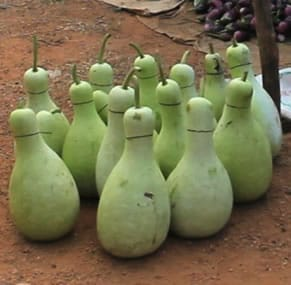 Gourd Arts And Crafts